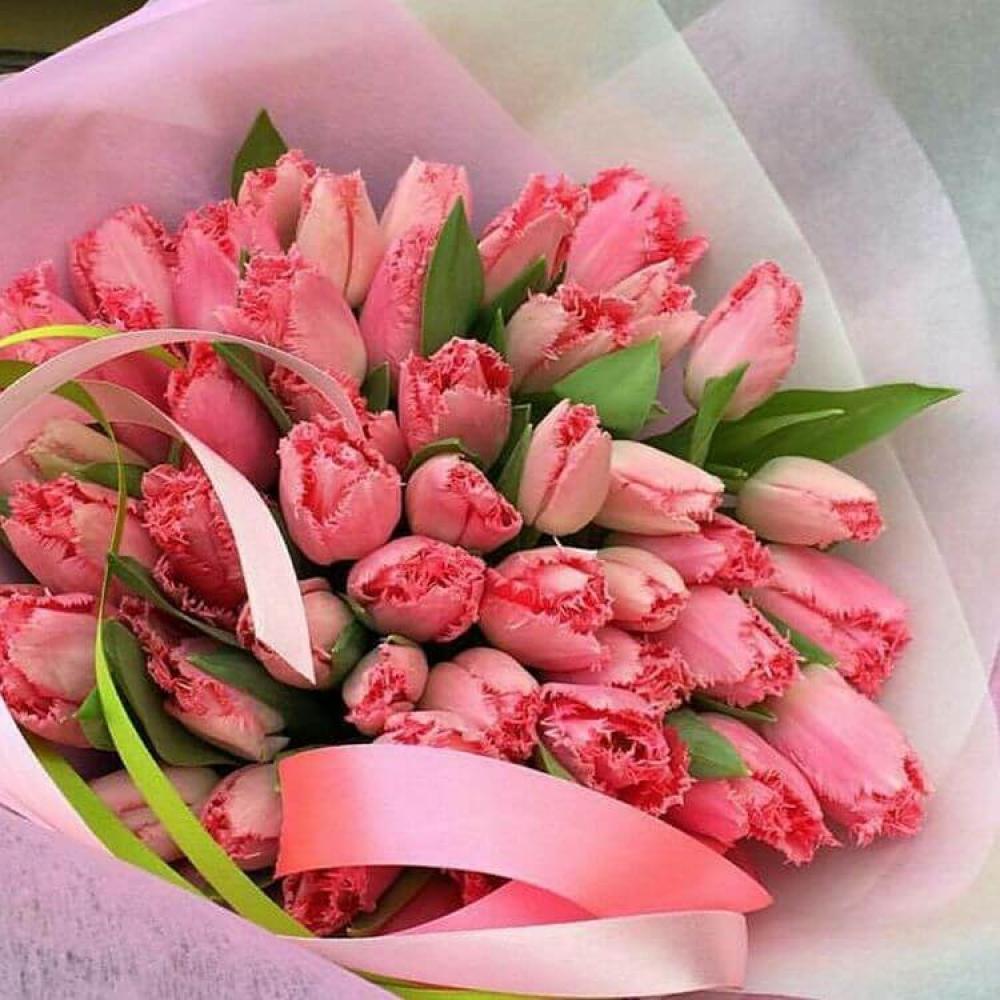 Букет из 51 кораллового тюльпана
