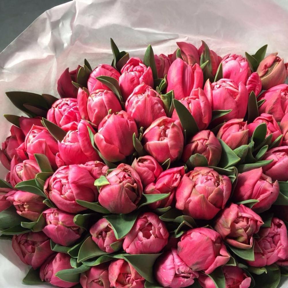 Букет из 101 малинового тюльпана