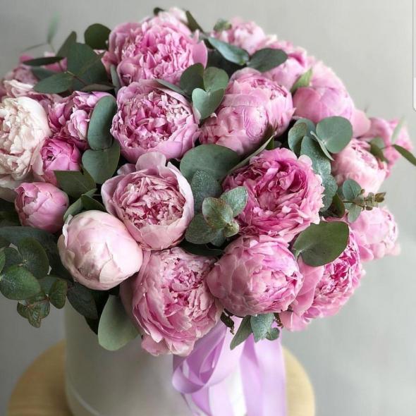 Букет из 27 розовых пионов с эвкалиптом в шляпной коробке