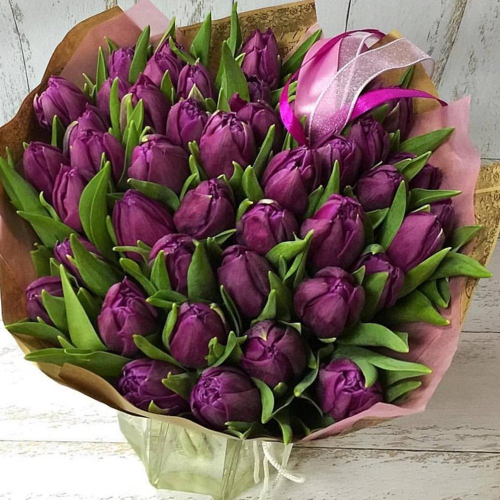 Букет из 51 тёмно-сиреневого тюльпана