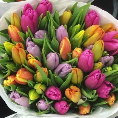 Букет из 51 тюльпана цвета микс