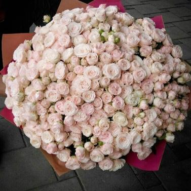 Букет из 101 кустовой пионовидной розы сорта Леди Бомбастик