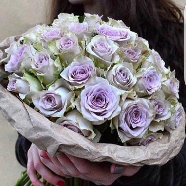 Букет из 49 роз сорта Morning Dew