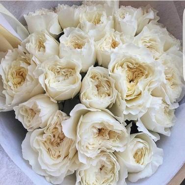 Букет из 21 розы сорта Дэвид Остин