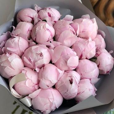 Букет из 19 розовых пионов