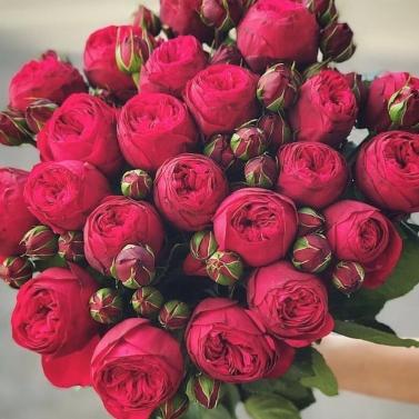 Букет из 39 роз сорта Ред Пиано