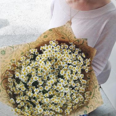 Букет из 25 полевых ромашек