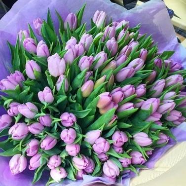 Букет из 101 лавандового тюльпана