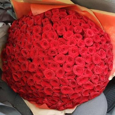 Букет из 250 роз
