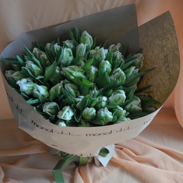 Букет из 75 зелёных тюльпанов